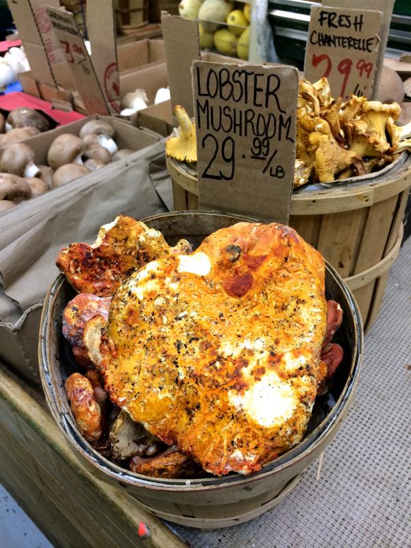 Eat all the weird food lobster mushroom